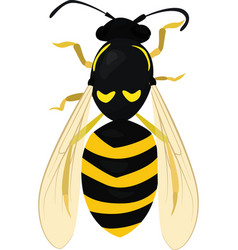 Sketch of wasp wasp isolated on white bee vector