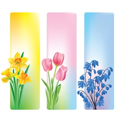 spring flowers banners vector image