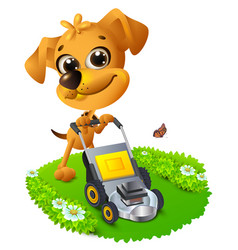 yellow fun dog mowing lawn vector image