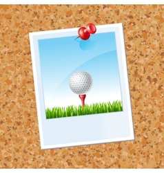 board with a photo a Golf ball vector image