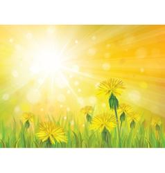 spring yellow sun vector image