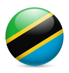 Round glossy icon of tanzania vector image