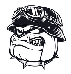 Bulldog biker with helmet vector