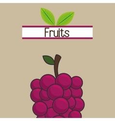 Fruit fresh food icon vector