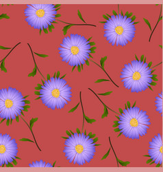 purple aster daisy on red background vector image