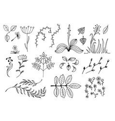 set of black hand drawn floral design elements vector image