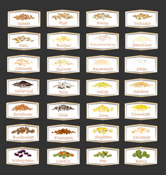set of cereal and grain emblems for packaging vector image