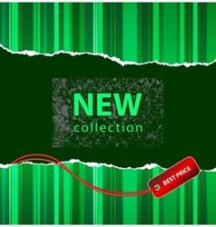 fashion promotion vector image