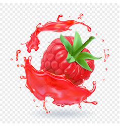 raspberry in berry juice splash vector image vector image