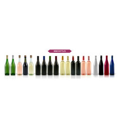 a large set of photo-realistic wine bottles vector image