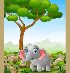 Cartoon elephant walking in the jungle vector