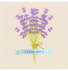 Lavender flowers icon vector