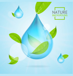 Nature concept transparent purity drop water and vector