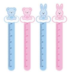 meter wall rabbits and bears vector image