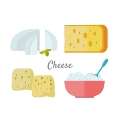 Assortment of Cheese Isolated on White Background vector