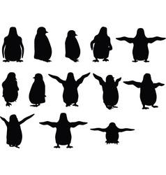 Baby animal penguin silhouette vector