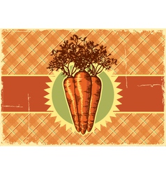 Carrots vintage label vector image