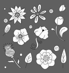 Freehand flowers set ink pencil leaves vector