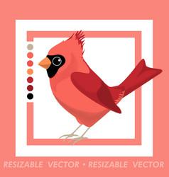 Northern cardinal jay vector