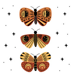 poster with mystic moths and butterflies vector image