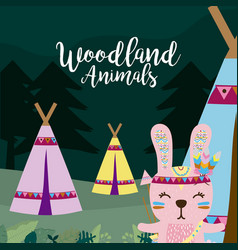 Rabbit wooland animals cartoon vector