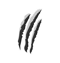 claw scratchs black silhouette werewolf vector image