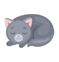 Sleeping cat icon in cartoon style isolated on vector image