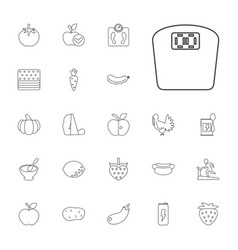 22 diet icons vector