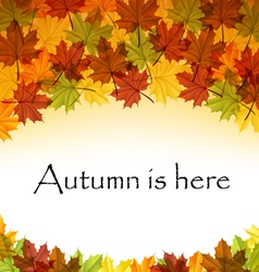 Autumn leaves text frame vector image