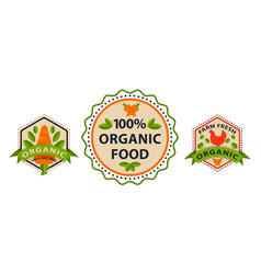 Flat style of bio organic eco healthy food label vector
