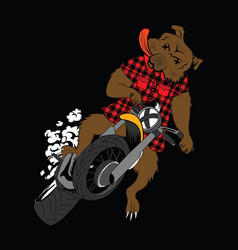 funny bear riding motor bike vector image