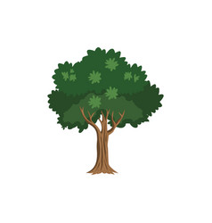 green tree icon clipart template vector image