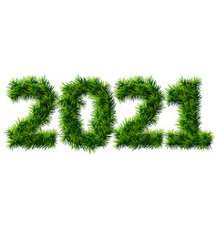 new year 2021 christmas tree branches isolated vector image
