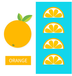 Orange fruit icon set slice in a row cut half vector