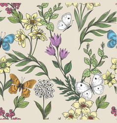 wildflowers and butterflies background vector image