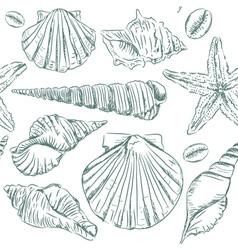 Seamless pattern of seashells vector image vector image