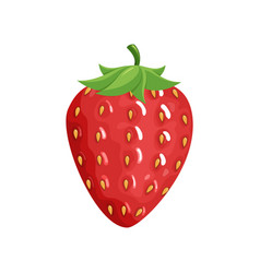 colorful fruit strawberry icon vector image