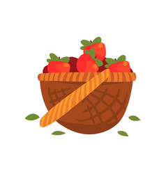 Red ripe apples in basket vector