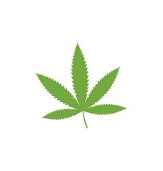 Canabis marijuana sign symbol vector