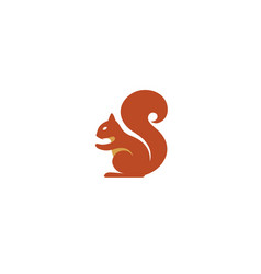 creative squirrel animal logo vector image