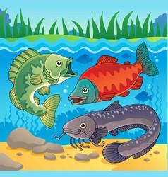 Freshwater fish theme image 3 vector