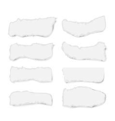 Set of varoious ripped paper pieces isolated on vector image