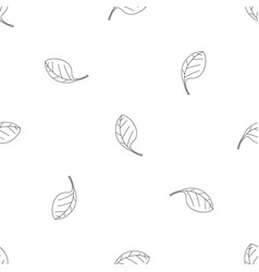 spinach leave icon outline style vector image