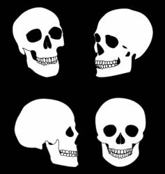 the black and white skull vector image