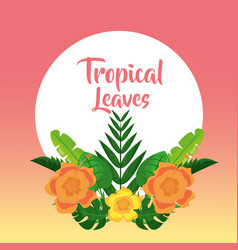 tropical leaves banner template fashion decoration vector image