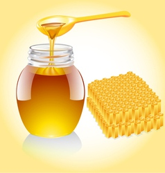 Honey Jar vector image vector image