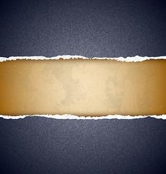 Textured torn paper vector image vector image