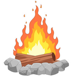 campfire with stones and wooden vector image