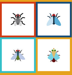 Flat icon housefly set of fly gnat tiny and vector