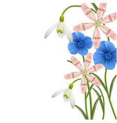 floral background spring flowers vector image